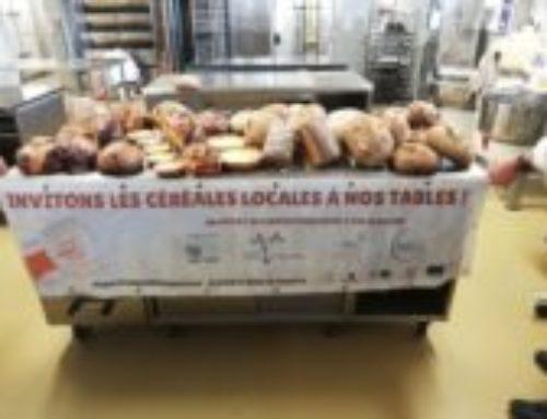 Une formation gratuite pour les boulangers du territoire